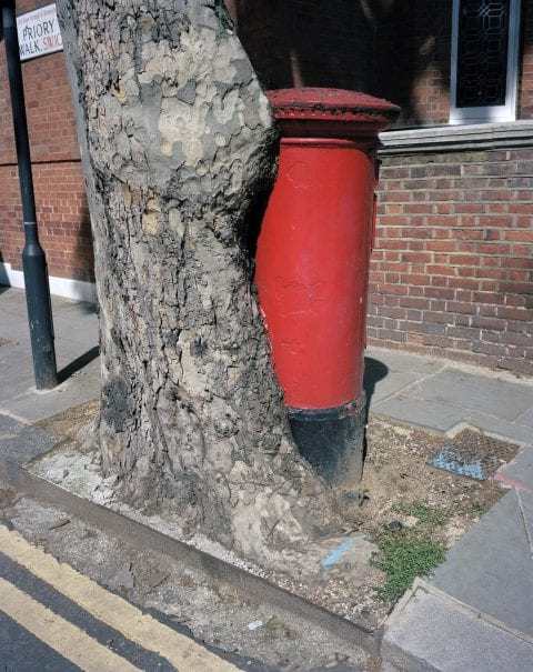 Post Box Tree