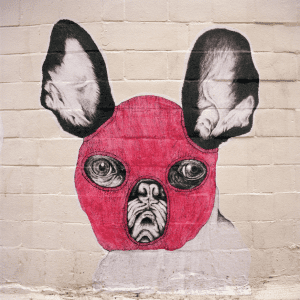 French Bulldog Graffiti
