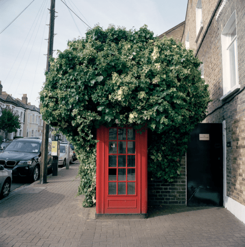Clapham Phone Box